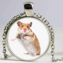 Necklace, Key Chain and Hairpin with Hamster Image